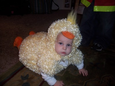 Little_chick